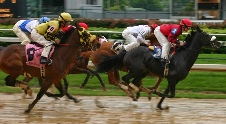 Casinoper At Yarışı Kazanma Taktikleri